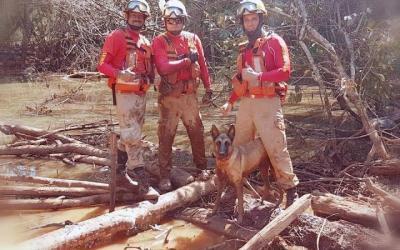 Bombeiros de Barra do Garças que ajudaram nas buscas em Brumadinho são homenageados na AL-MT