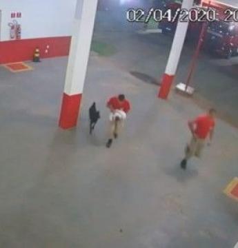 Bombeiros salvam vida de 2 bebês engasgados em MT