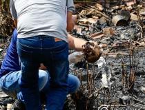 Moradores encontram ossada humana em terreno na região do Porto