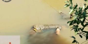 Dois são presos acusados de matarem jovem encontrado no rio Cacau em Confresa