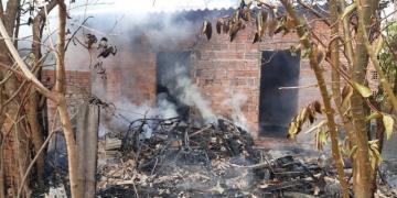 Homem tenta retirar enxame de abelhas com tocha de fogo e coloca fogo na própria casa