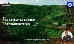Mato Grosso luta contra o desmatamento ilegal VEJA VÍDEO