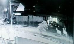 Ladrões folgados furtam éguas VEJA VÍDEO
