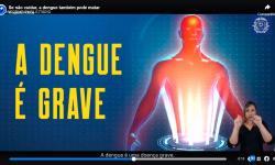 Se não cuidar, a dengue também pode matar VEJA VÍDEO