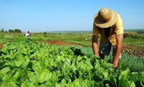 MPF alerta Incra de Barra do Garças para verificar perfil de quem está pleiteando terra na região