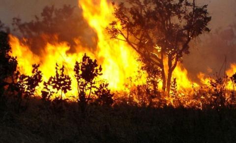Mato Grosso lidera ranking no país e registra quase 9 mil focos de queimadas de janeiro a agosto