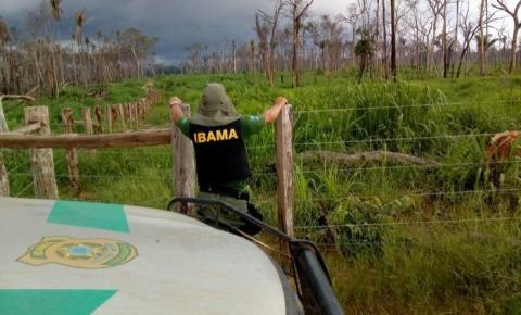Ibama aplica quase R$ 40 milhões em multas na Região do Araguaia