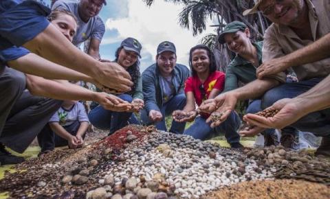 Rede de Sementes do Xingu é tema de reportagem na TV Cultura neste domingo (14/4)