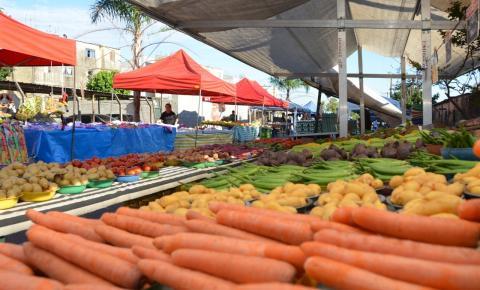 Roberto Farias sanciona lei que cria feira de sexta-feira em Barra do Garças