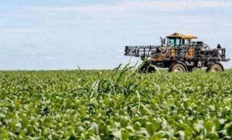 Justiça autoriza recuperação de grupo do agro que tem dívidas de R$ 58 mi em MT