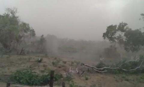 As assustadoras tempestades de cinzas que põem em risco moradores do Pantanal