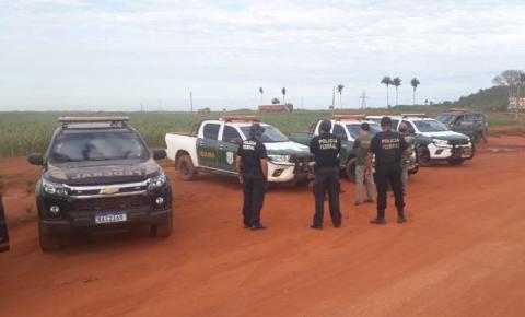 PF e Ibama fazem operação contra desmatamento em terra indígena no Araguaia