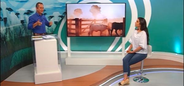 Mulher revoluciona e transforma fazenda do Araguaia em referência mundial de bem-estar